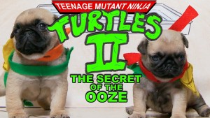 Ninja Turtles 2 (Pug Puppy Version)