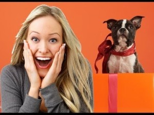 womans puppy gift reaction compi 300x225